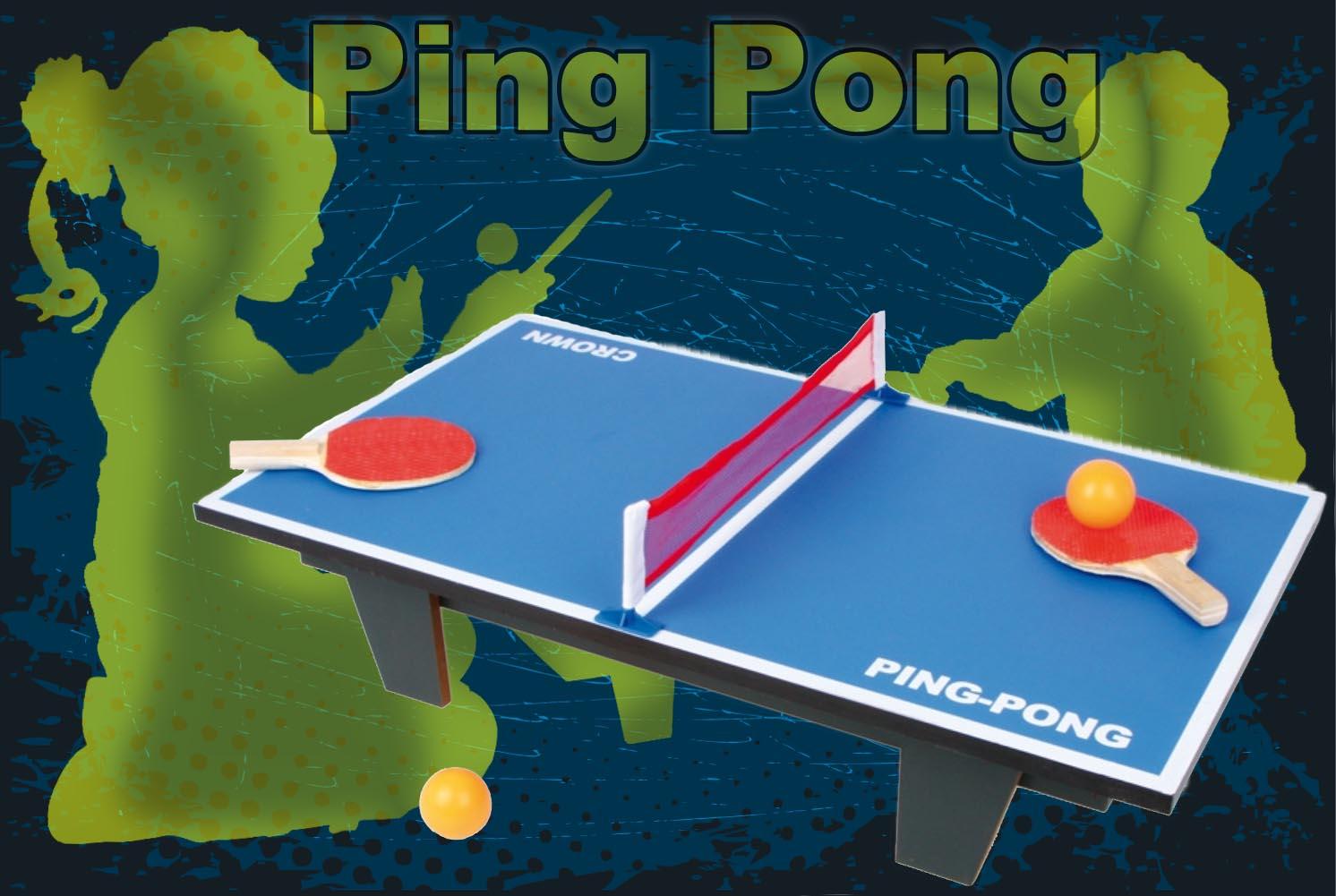 Gioco tennis tavolo ping pong per bambini interno gambe palline incluse f1023 ebay - Dimensioni tavolo da ping pong ...